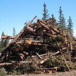 Affordable Housing for Bruins